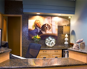 The front desk of your dentist in North Oaks MN, Dr. Gorman - see why people are choosing us